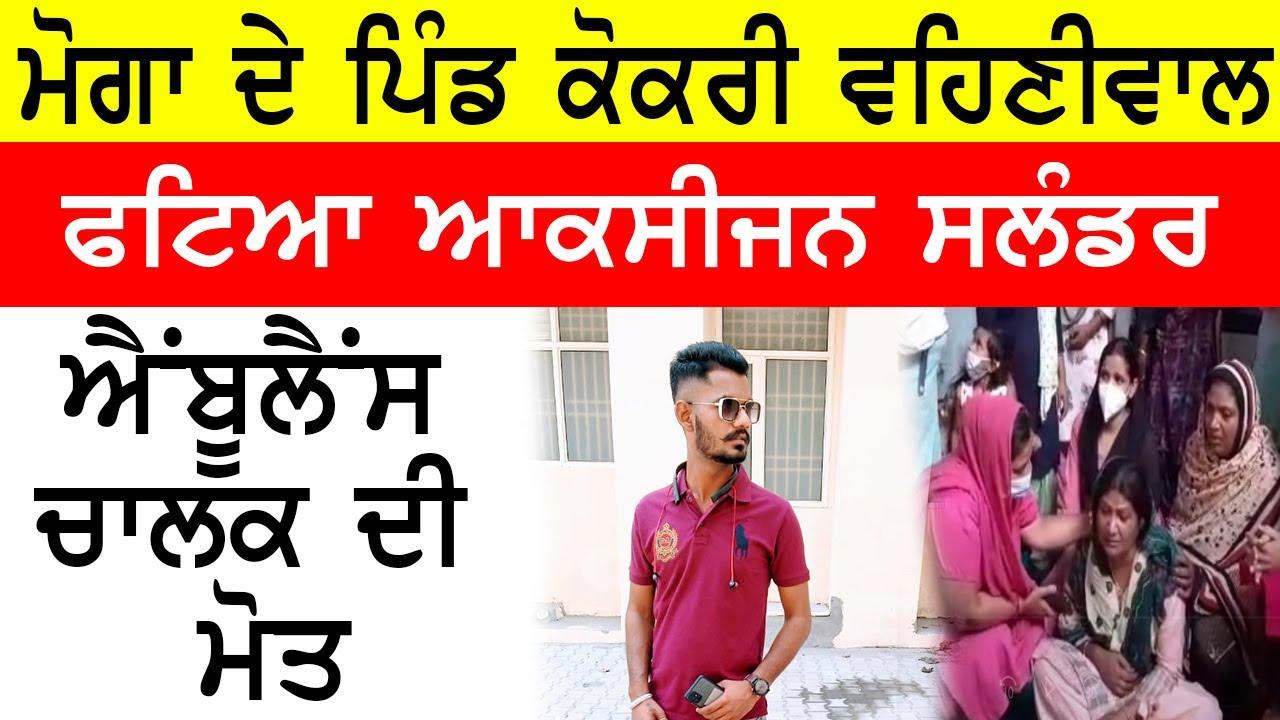 Download Moga  Kokri Vehniwal news | Punjab news | Punjabi News Live Today | Noi24 News Live