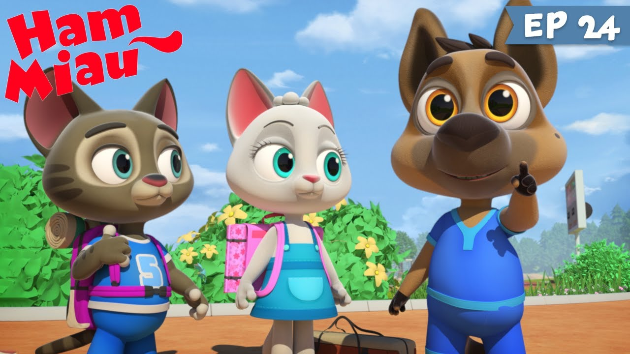 Ham Miau ? Excursia ? Desene animate pentru copii