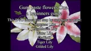Gum paste Flowers One beginners guide promo