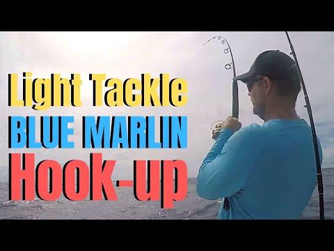 Deep Sea Fishing | Light Tackle BLUE MARLIN Hook-up