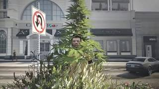 GTA V BUG - Virei o HOMEM ÁRVORE 😄