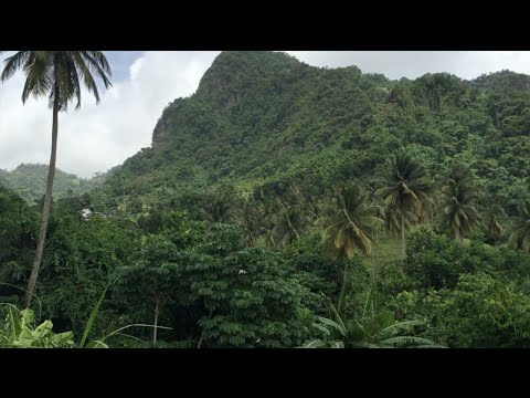 Seat Backs & Tray Tables: St Vincent- Our Last Day Of Exploring!
