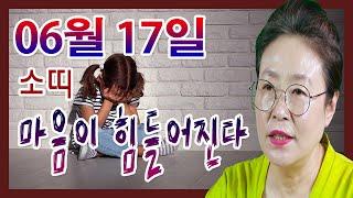 2020년 06월 17일 오늘의 운세 소띠 용서가 되지 않아 마음이 힘들어진다 수미산당 구슬보살  010-6…