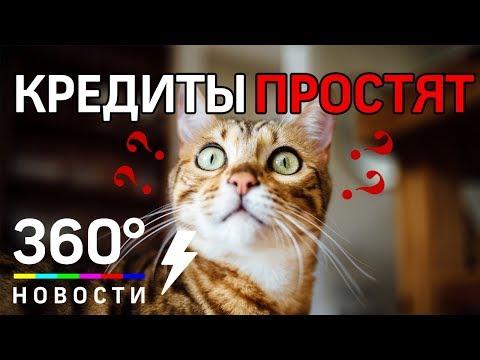 Россиянам ограничили микрокредиты и скостили долги