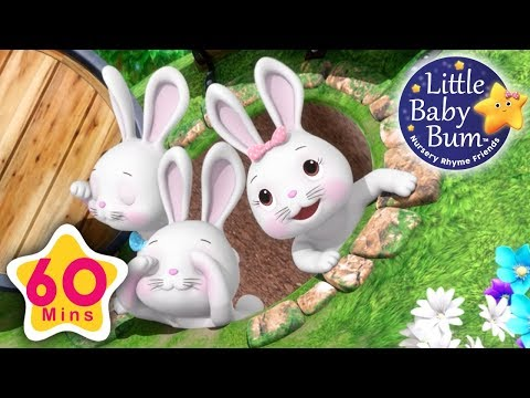 Bunny Hop Hop   Plus Lots More Nursery Rhymes   60 Minutes Compilation from LittleBabyBum!