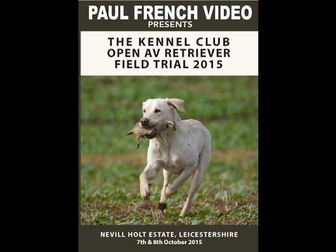 The Kennel Club Open AV Retriever Trial 2015