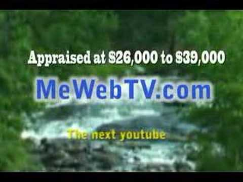 Work at home selling Domain Names for sale internet websites