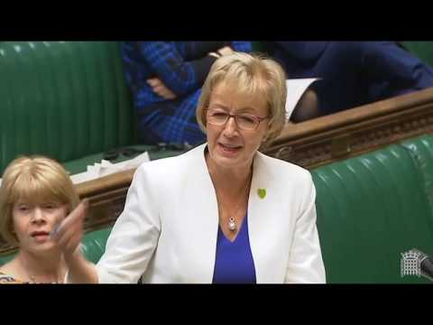 Andrea Leadsom versus Pete Wishart - with a sense of humour