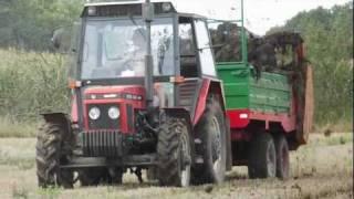 URSUS 1014/URSUS 912/ZETOR 7245 Czyli Uprawa pod Rzepak 2011