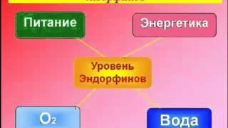 Тетюк В.  Методика быстрого и правильного отказа от зависимости курения    часть3-4