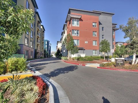 1101 South Main Street #130, Milpitas, CA 95035 (English)
