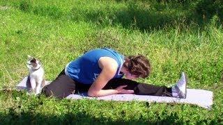 Упражнения на растяжку: как сесть на шпагат(У нас Вы можете заказать индивидуальную (персональную) программу тренировок по интернету: http://atletizm.com.ua/personal..., 2013-09-15T09:47:40.000Z)