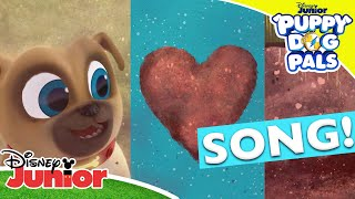 🎵 I Love Dirt! | Puppy Dog Pals | Disney Junior UK