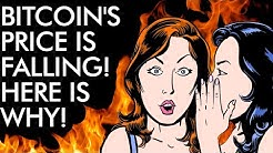 Bitcoin's Price is FALLING! Here is WHY
