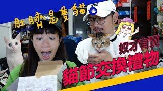 ◖肚臍是隻貓◗ 貓節交換禮物奴才有責 貓奴獻禮 feat. 魚乾、黃阿瑪的後宮生活、豆漿、 拉姆有幾噗、走路痛 ♪