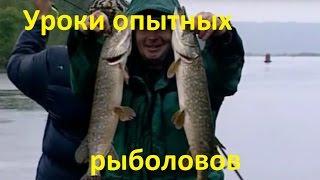 Диалоги о рыбалке -1- Уроки опытных рыболовов