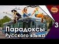 Парадоксы русского языка. Часть 3.