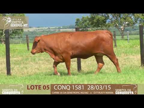 LOTE 05 CONQ 1581
