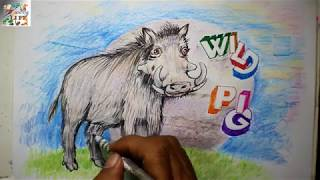How to draw Wild Pig step by step