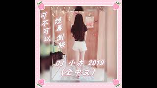 DJ 小亦 2019 (可不可以 煙幕 側臉) 全中文