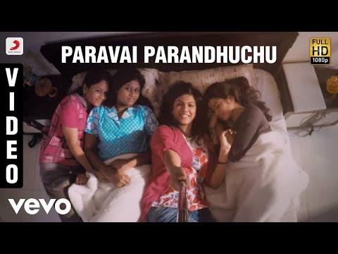 Paravai Parandhuchu Video | Vijay Sethupathi | Santhosh Narayanan