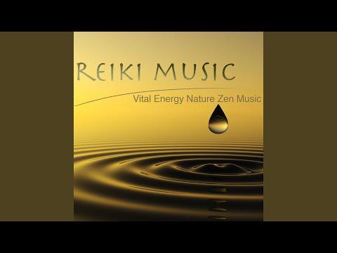 Meditation Music (Piano)
