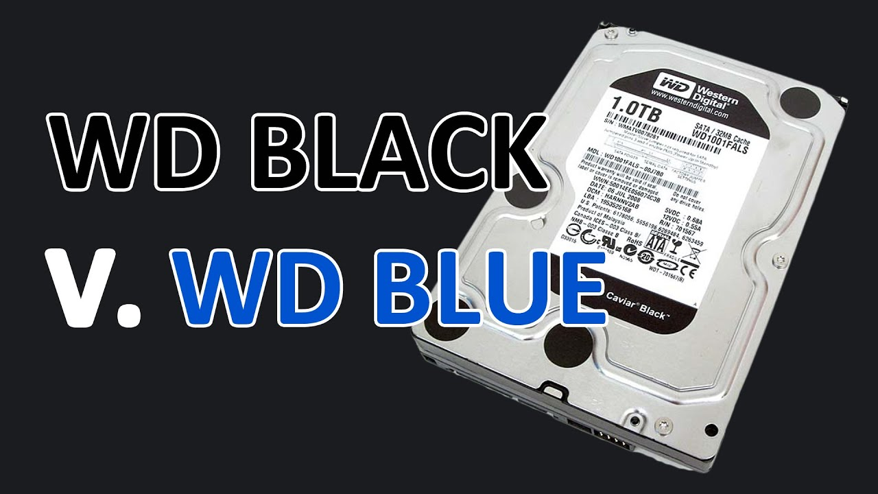 Wd Blue Vs Black Green Best Hdd For Gaming Youtube Hardisk Internal Pc 320gb New