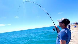 Pier Fishing Lake Michigan SUMMER STEELHEAD! - July 2021