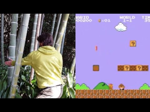 Bamboo forest sounds like Super Mario
