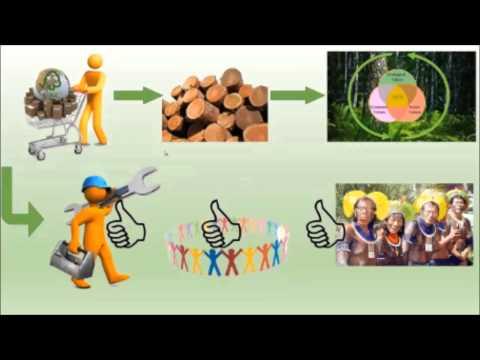 Forest Stewardship Council (FSC) Certification - Amalcor