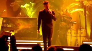 Killers--Neon Tiger--Live in Denver-2009-01-17