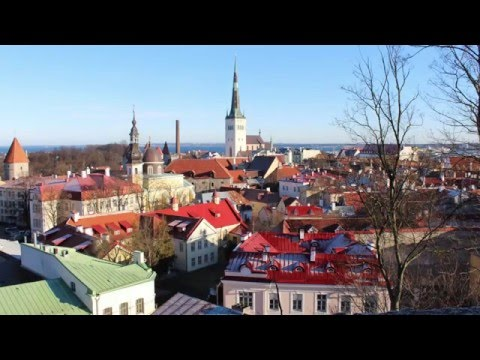 Teacher trainning, Tallinn, Estonia, 14.-20. 2. 2016.  -  cu