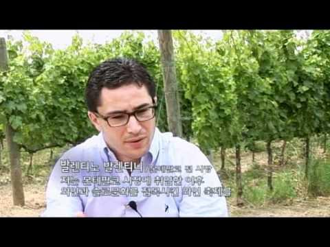 Tessitura Pardi - Korean Broadcasting System (KBS)