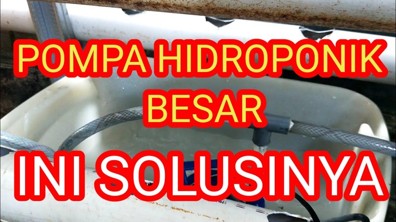 Cara Memasang Pompa Hidroponik - sistem hidroponik