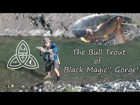 Fly Fishing | The Bull Trout Of