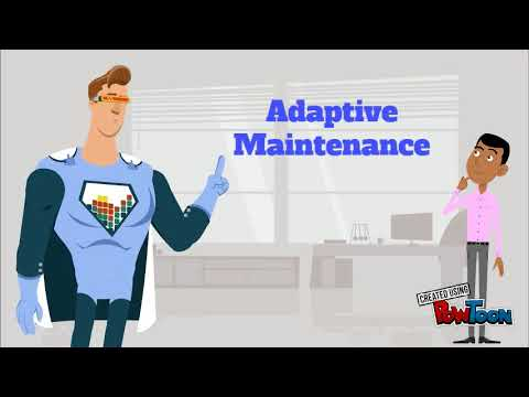 THE TYPE OF SOFTWARE MAINTENANCE IN 60 SECONDS