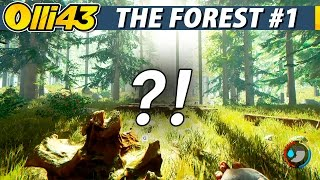 MY FIRST EXPERIENCE IN THE FOREST.. (The Forest Gameplay Part 1)