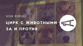 «Пускай люди скачут»: харьковчане о запрете цирка с животными