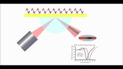 Surface Plasmon Resonance Explained