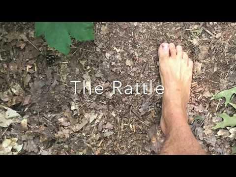 Shamanic singing - the rattle