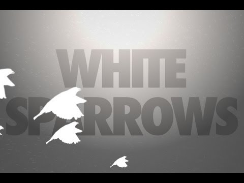 Billy Talent - White Sparrows | Lyric Video