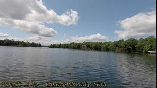 Forest Lake Video 1
