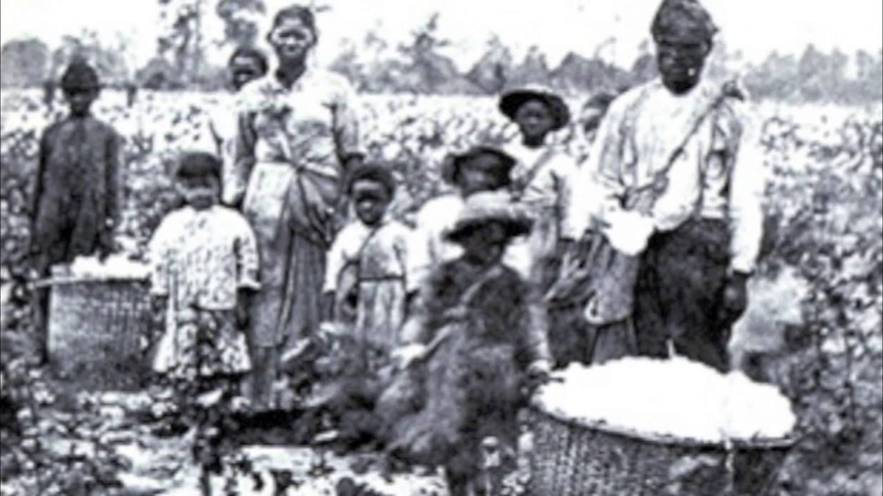 tobacco cotton slavery frq Compare and contrast the experience of slaves on tobacco plantations in the early seventeenth-century chesapeake region with that of slaves on.