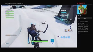 Playing fortnite with random people