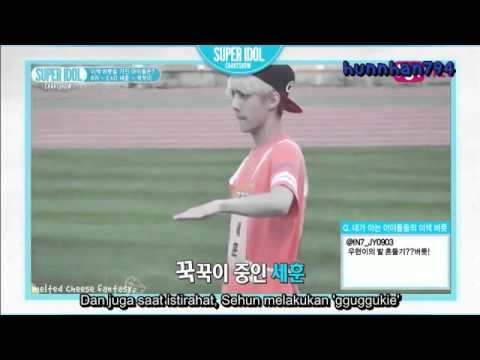 [INDO SUB] EXO SEHUN 세훈 꾹꾹이 HABIT