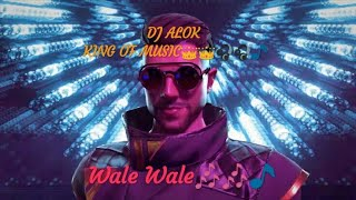 King of music dj alok wale song