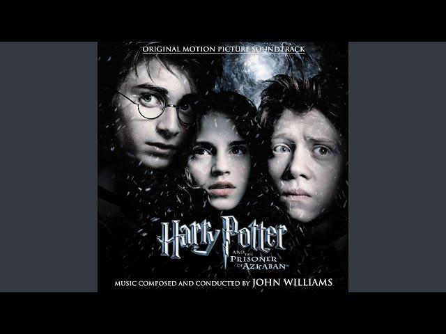 Hagrid the Professor