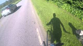 Pitbull pulling man on bike at great speed! (bikejoring)