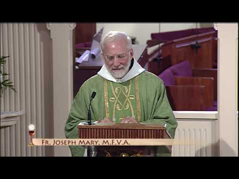 Daily Catholic Mass - 2019-06-17 - Fr. Joseph