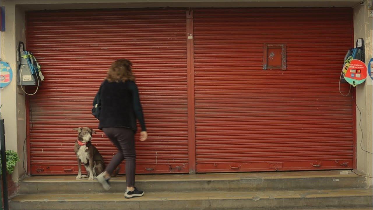 Juntos Salimos Adelante: Lily, la bodeguera que redobla su esfuerzo ante la crisis